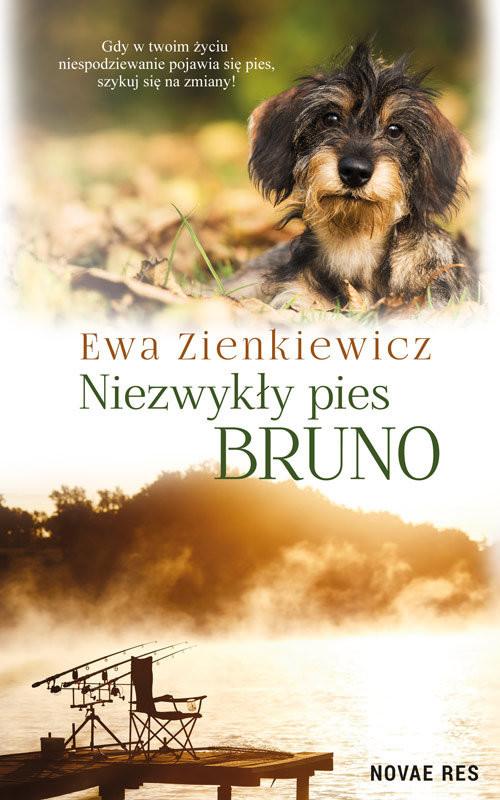 okładka Niezwykły pies Bruno, Książka   Ewa  Zienkiewicz