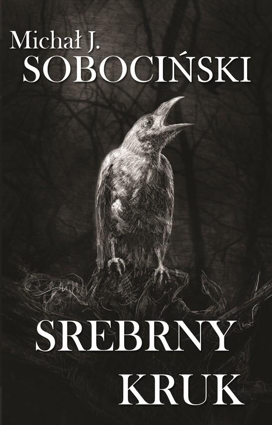 okładka Srebrny Krukebook   epub, mobi   Michał Jan Sobociński