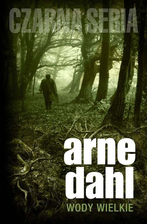 okładka Wody wielkieksiążka |  | Arne Dahl