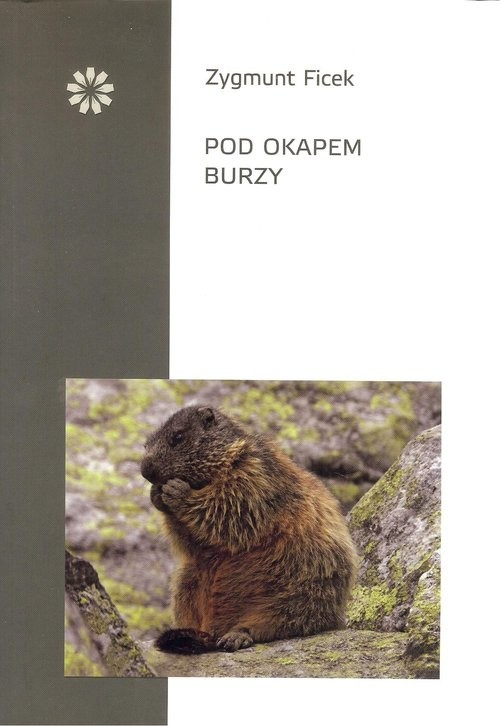 okładka Pod okapem burzyksiążka      Ficek Zygmunt