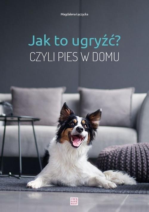 okładka Jak to ugryźć? Czyli pies w domuksiążka |  | Łęczycka Magdalena