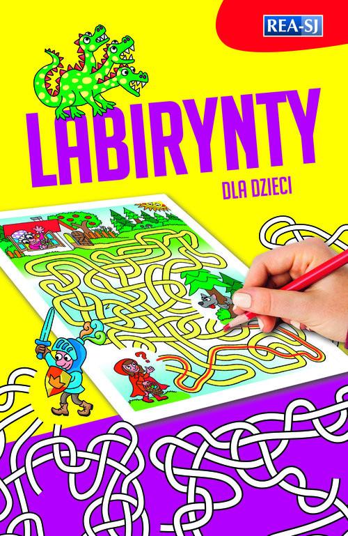 okładka Labirynty, Książka | Praca Zbiorowa