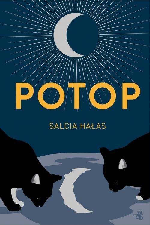 okładka Potopksiążka |  | Salcia Hałas
