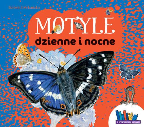 okładka Motyle dzienne i nocne, Książka | Dziekańska Izabela