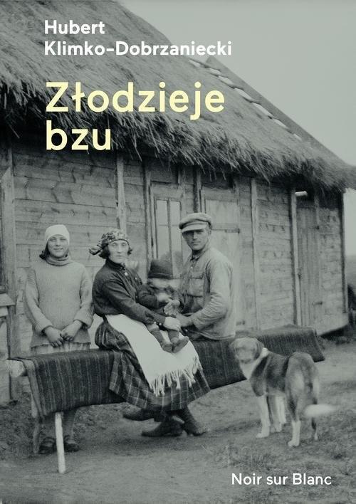 okładka Złodzieje bzu, Książka | Hubert Klimko-Dobrzaniecki