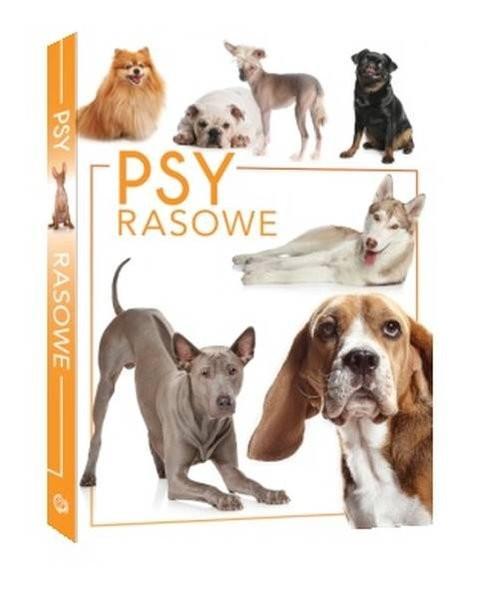 okładka Psy rasowe, Książka | Przeczek Izabela