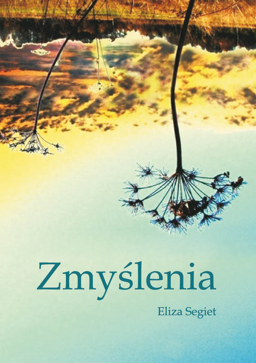 okładka Zmyślenia, Książka | Segiet Eliza