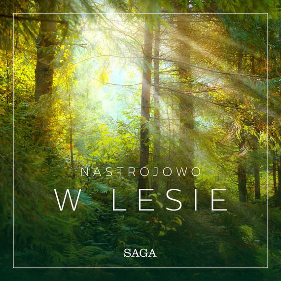 okładka Nastrojowo - W lesieaudiobook | MP3 | Broe Rasmus