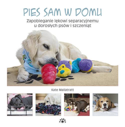 okładka Pies sam w domu Zapobieganie lękowi separacyjnemu u dorosłych psów i szczeniątksiążka |  | Mallatratt Kate