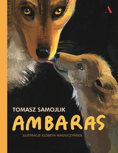 okładka Ambarasksiążka      Samojlik Tomasz