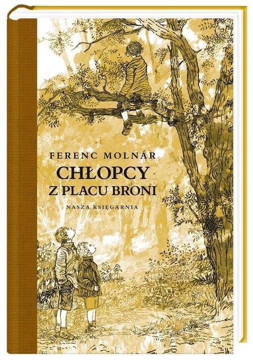 okładka Chłopcy z Placu Broniksiążka      Ferenc Molnar