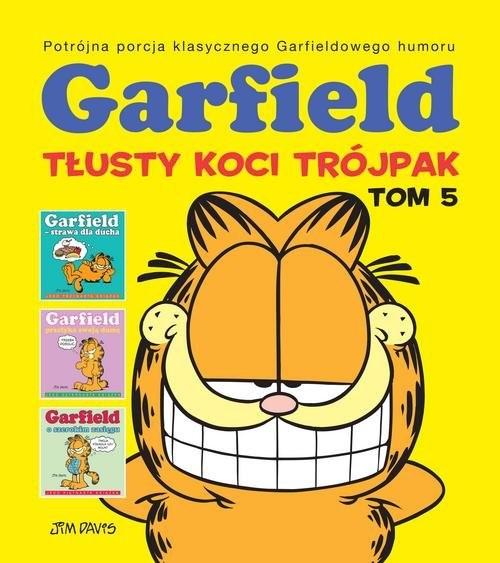 okładka Garfield Tłusty koci trójpak Tom 5książka |  | Davis Jim