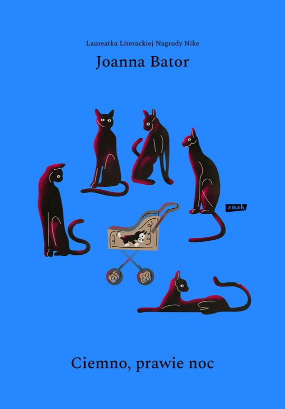 okładka Ciemno, prawie nocebook   epub, mobi   Joanna Bator