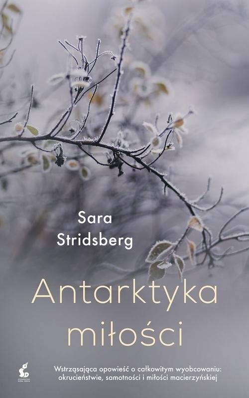 okładka Antarktyka miłościksiążka      Stridsberg Sara