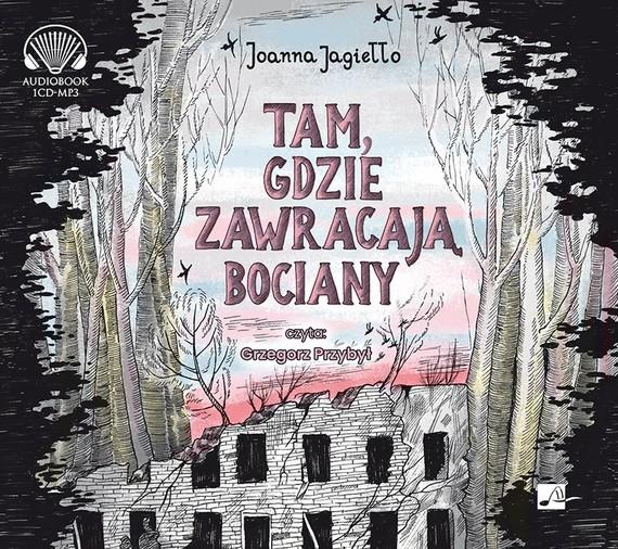 okładka Tam gdzie zawracają bocianyaudiobook | MP3 | Joanna Jagiełło
