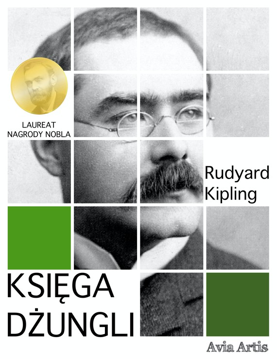 okładka Księga dżungliebook | epub, mobi | Kipling Rudyard