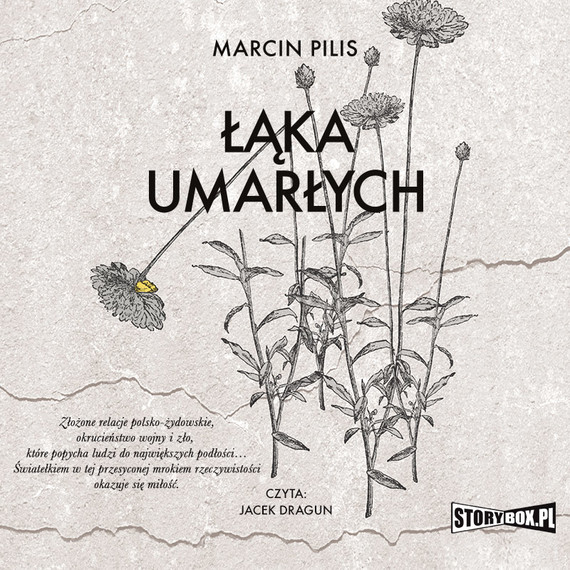 okładka Łąka umarłychaudiobook   MP3   Marcin Pilis