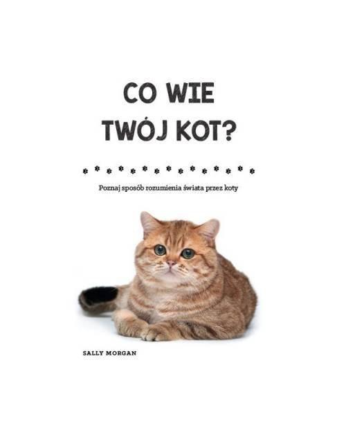 okładka Co wie Twój kot? Poznaj sposób rozumienia świata przez kotyksiążka |  | Morgan Sally