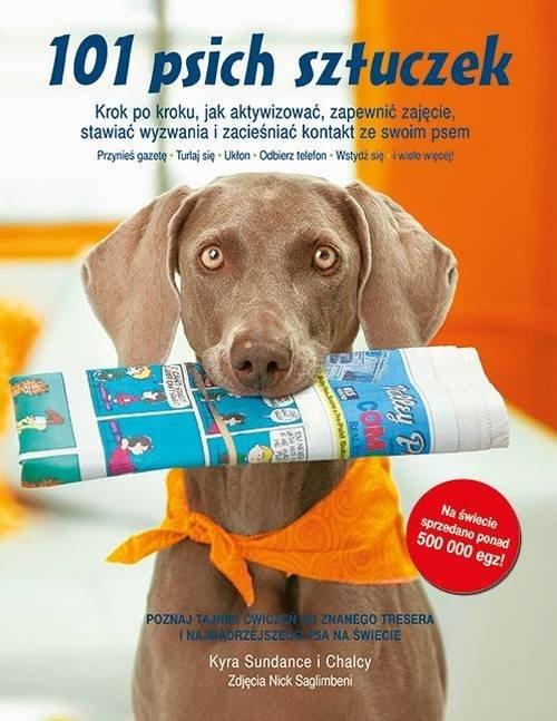 okładka 101 psich sztuczek Krok po kroku, jak aktywizować, zapewnić zajęcie, stawiać wyzwania i zacieśniaćksiążka |  | Kyra Sundance