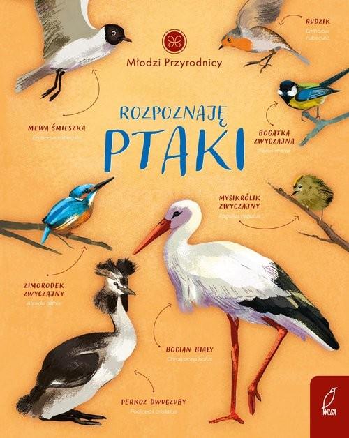 okładka Młodzi przyrodnicy Rozpoznaję ptakiksiążka      Patrycja Zarawska