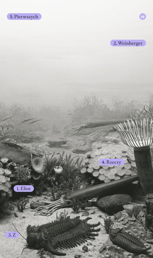 okładka Z rzeczy pierwszychebook | epub, mobi | Eliot Weinberger