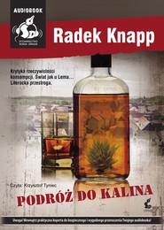 okładka Podróż do Kalina. Audiobook | MP3 | Radek  Knapp