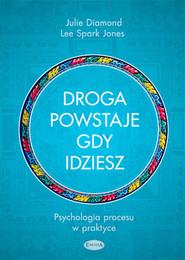 okładka Droga powstaje, gdy idziesz Psychologia procesu w praktyce, Książka | Julie Diamond, Lee Spark Jones
