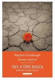 okładka Sny, które budzą Opowieści psychoterapeutyczne, Książka   Wojciech  Eichelberger, Tomasz Jastrun