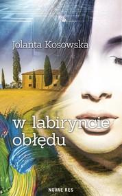 okładka W labiryncie obłędu. Książka | papier | Kosowska Jolanta