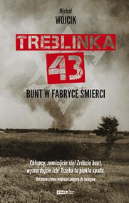 okładka Treblinka 43. Bunt w fabryce śmierci, Książka | Wójcik Michał