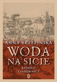 okładka Woda na sicie Apokryf czarownicy, Książka | Brzezińska Anna