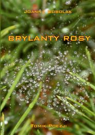 okładka Brylanty rosy. Książka | papier | Sobolak Joanna