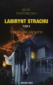 okładka Labirynt strachu Tom 2 Światło jest kapryśne. Książka   papier   Nowosielska Beata