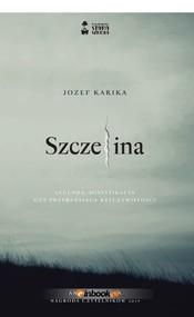 okładka Szczelina, Książka | Karika Jozef