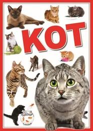 okładka Koty, Książka |