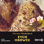 okładka Życie mrówek, Audiobook | Maurice Maeterlinck