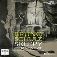 okładka Sklepy cynamonowe, Audiobook | Bruno Schulz