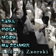 okładka Ręka, noga, mózg na ścianie, Audiobook | Zaorski Andrzej