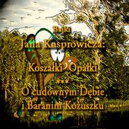 okładka Bajki Jana Kasprowicza, Audiobook | Jan Kasprowicz