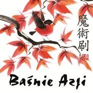 okładka Baśnie Azji, Audiobook | Robert Stiller