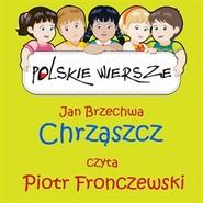 okładka Polskie wiersze - Chrząszcz, Audiobook | Jan Brzechwa