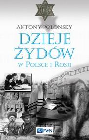 okładka Dzieje Żydów w Polsce i Rosji, Ebook | Antony  Polonsky