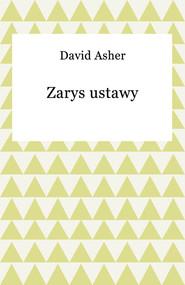 okładka Zarys ustawy, Ebook | David Asher