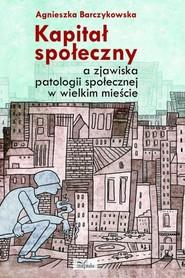 okładka Kapitał społeczny a zjawiska patologii społecznej w wielkim mieście, Ebook | Agnieszka Barczykowska