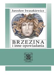 okładka Brzezina i inne opowiadania, Ebook   Jarosław Iwaszkiewicz