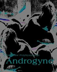 okładka Androgyne, Ebook | Stanisław Przybyszewski