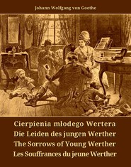 okładka Cierpienia młodego Wertera, Ebook | Johann Wolfgang von Goethe