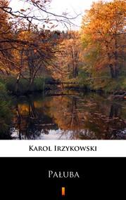 okładka Pałuba, Ebook | Karol Irzykowski