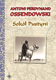 okładka Sokół Pustyni, Ebook   Antoni Ferdynand Ossendowski