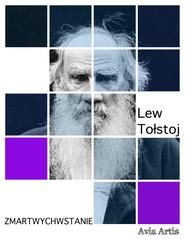 okładka Zmartwychwstanie, Ebook | Lew Tołstoj